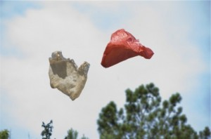 Plastic bags in Arts