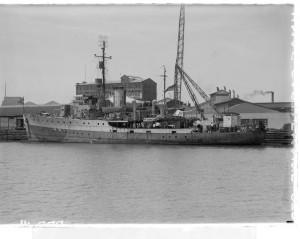 HMAS Castlemaine, c.1954