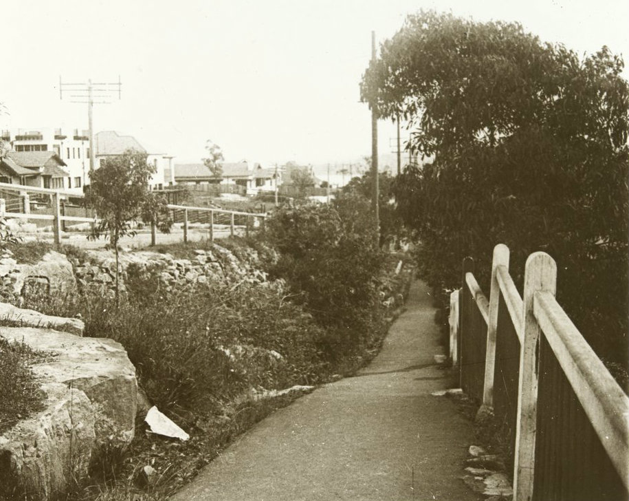 A footpath, fence and bushes from 1910.