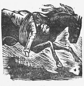 Police News, 1877