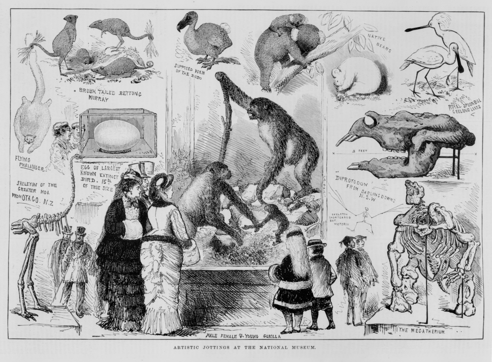 The Australasian sketcher: 5 August, 1876