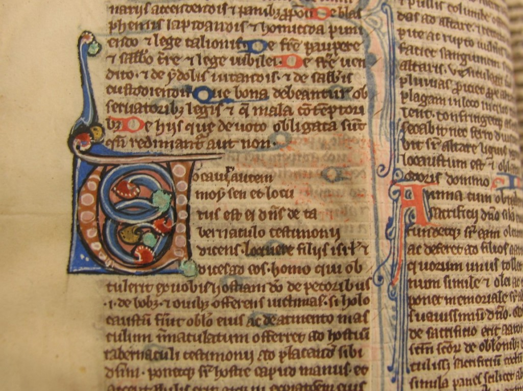 Decorated initials and tiny script in the bible