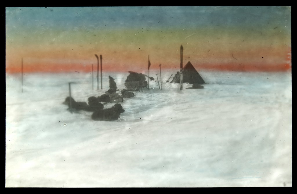 Image of camp and dogs at Antarctica