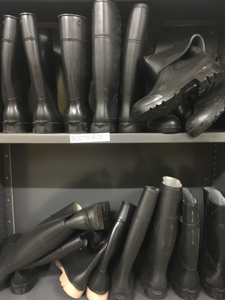 gumboots in disaster store