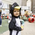 Penguins get to partying at Play Pod