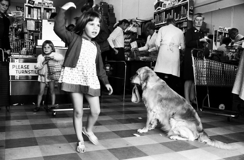 A young girl and a dog holding a bag in its mouth inside a supermarket.