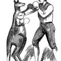 Fighting Jack: Melbourne's first boxing kangaroo