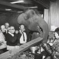 State Library Victoria calls on public to save Australia's greatest news pictures