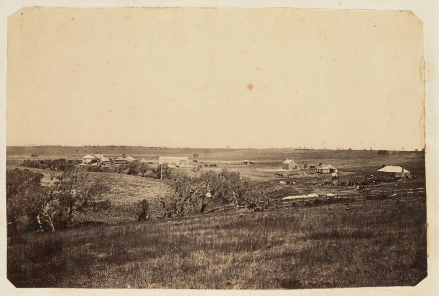 Terrinallum, circa 1859