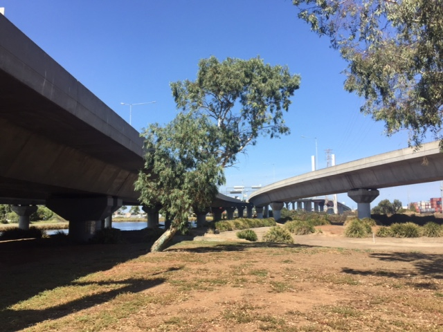 view from under freeway overpass