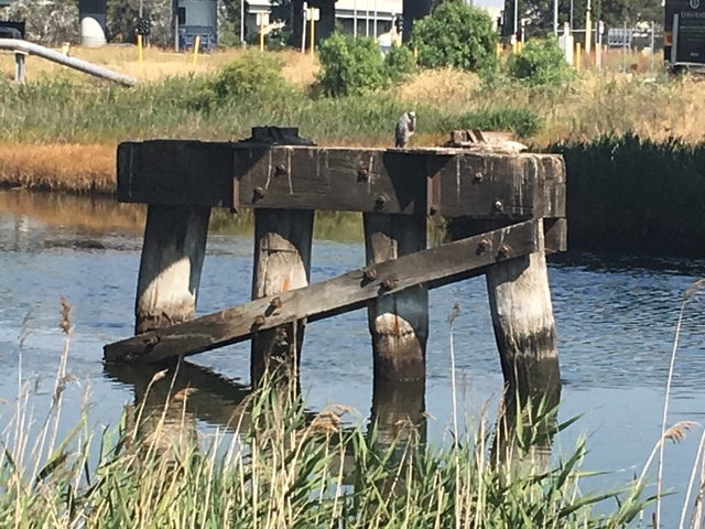 remains of railway bridge support in water