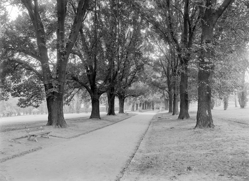 Black and white photo of garden path in the Fitzroy Gardens