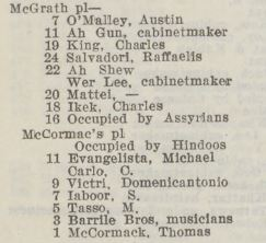 Snapshot from Sands & Mcdougall directory featuring eclectic list of residents from McGrath Place and McCormac's Place in Little Lon.