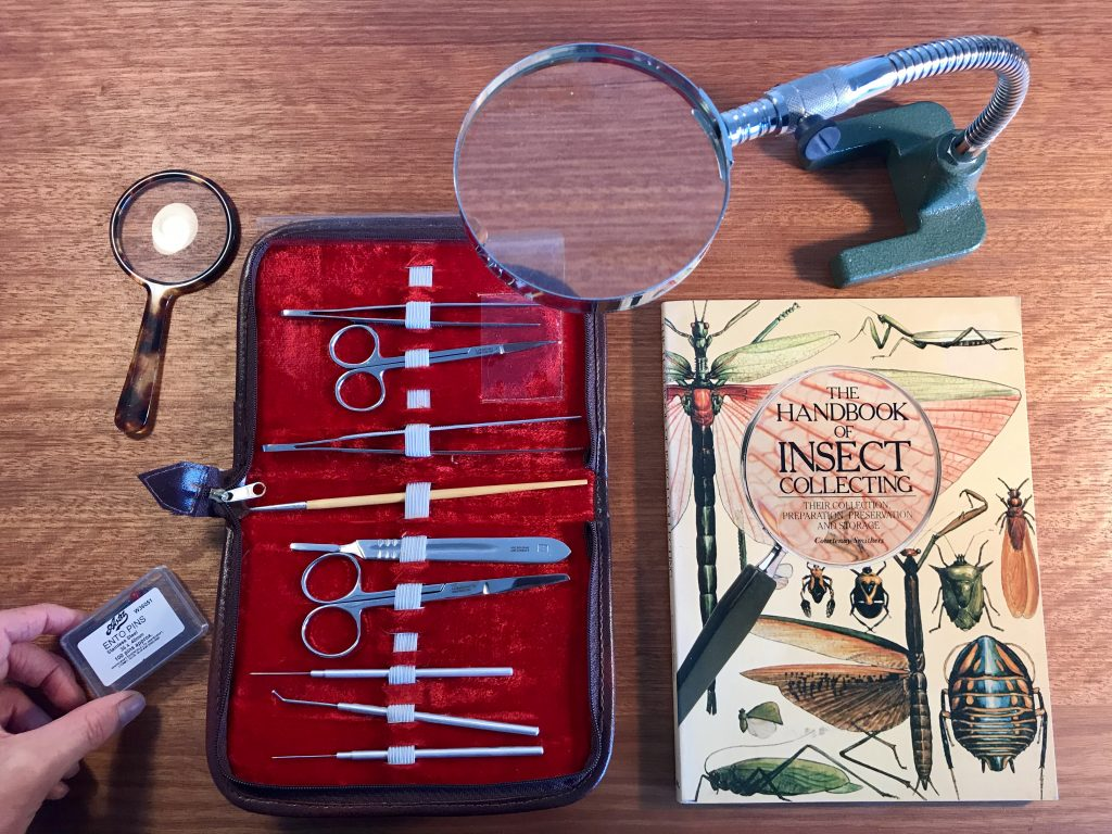 Book, tools and magnifying glass on table