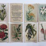 silk cigarette cards