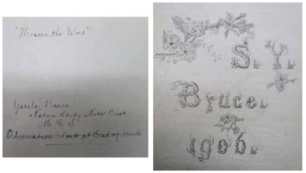 Details of handwritten inscriptions from school book belonging to Yatala Bruce, including her initials, date, school motto, and drawing of flowers.