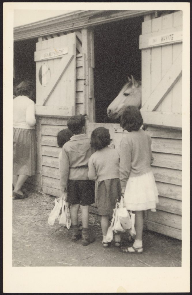 Black and white photo of four children carrying showbags standing at the open door of a horse box, looking at horse