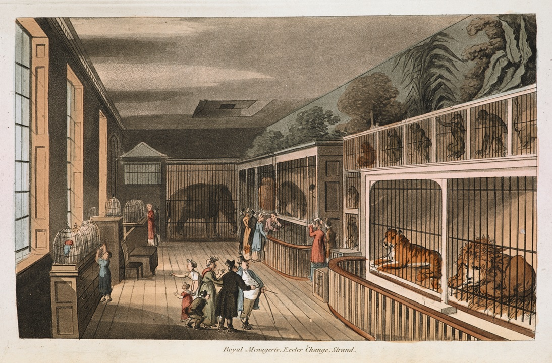 Colour illustration of exotic animals, including a tiger, a lion, monkeys and an elephant in small cages inside animal menagerie. A man in a top hat and tails is showing people around