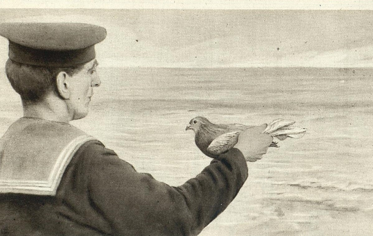 Black and white photo of a sailor at sea holding a carrier pigeon aloft