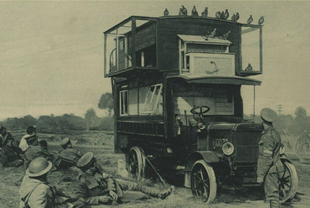 A military truck with cage of  pigeons on its roof