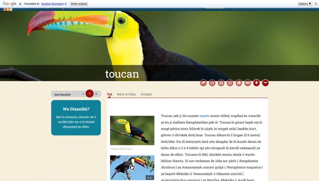 Screenshot of Britannica Teens article on toucans in Kurdish