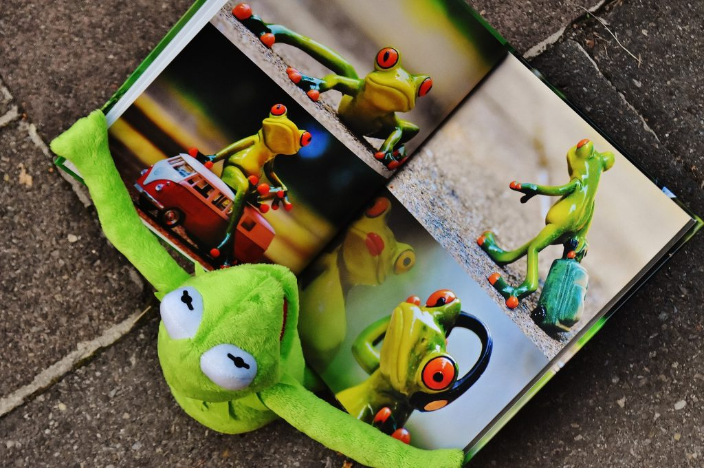 Photo of Kermit the frog (puppet) reading a book featuring photos of other frogs